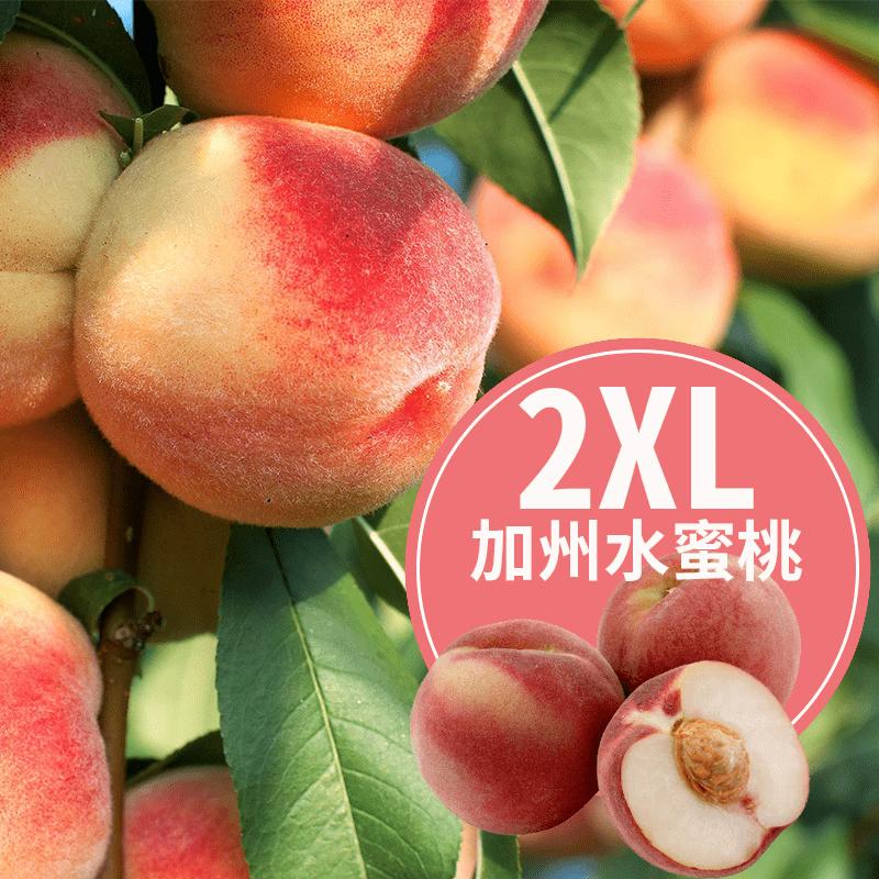 2XL大顆加州水蜜桃禮盒