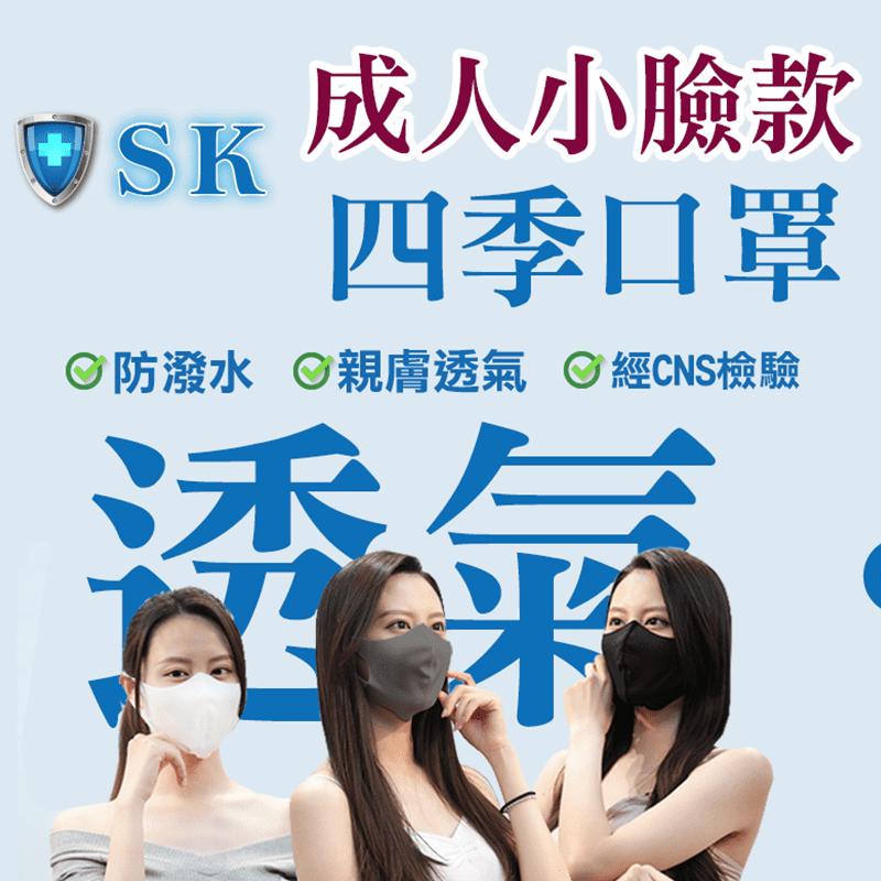 CNS通過成人小臉款口罩(4 片)