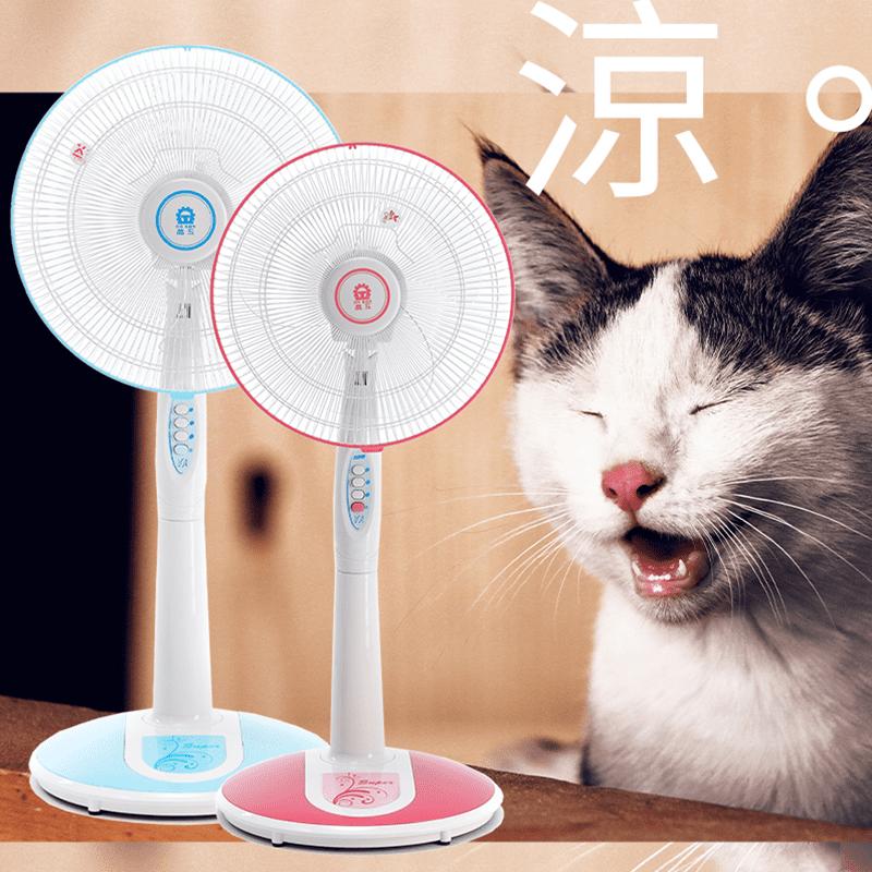 【晶工】14吋16吋經典雅緻立扇電風扇