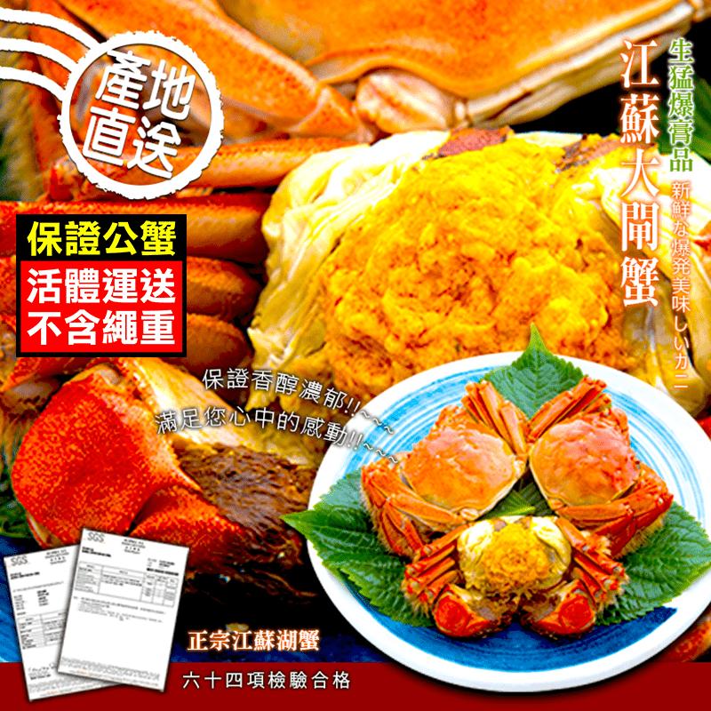 【優鮮配】特A規格鮮活江南大閘蟹10隻(5.5兩/隻)